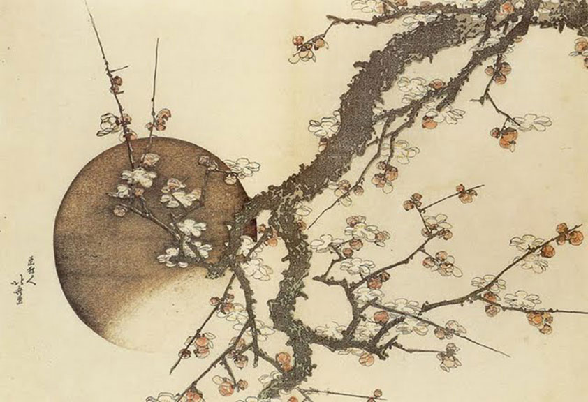 http://johnwardknox.com/files/gimgs/32_hokusai-plum.jpg